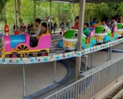 track train rides for sale cheap
