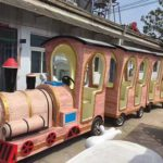 Amusement Park Train for Sale in Beston – Professional Manufacturer
