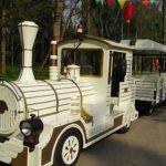 Electric Train Rides for Sale