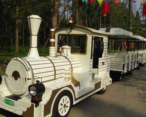 electric train rides manufacturer
